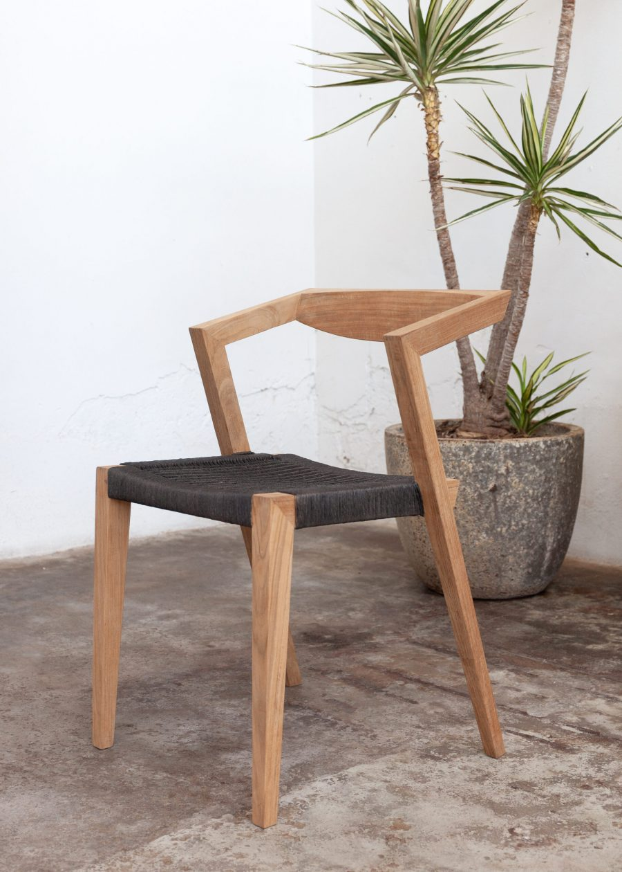 dining chair with plant