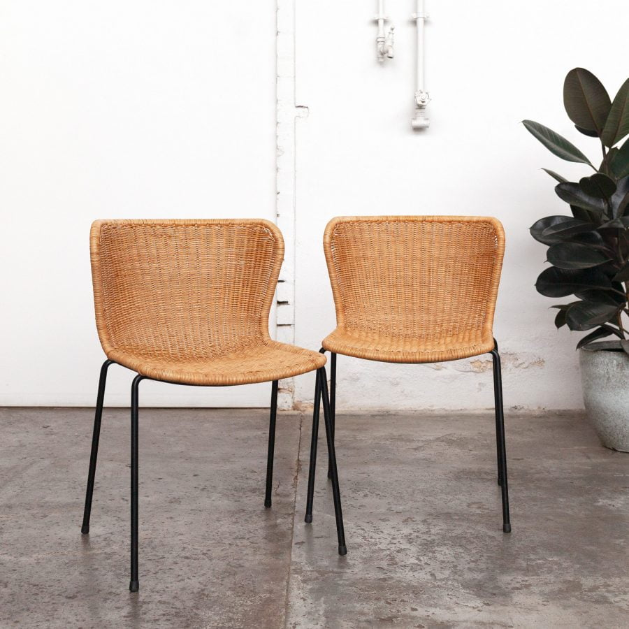dining table chairs with plant