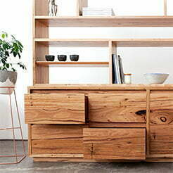 wall unit with pottery and plant