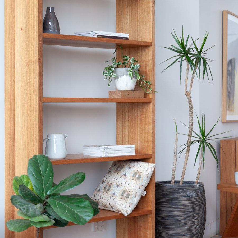bookshelf with fig plant